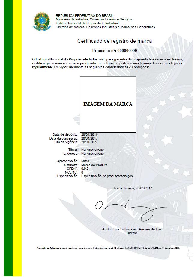767bc1718 06 Concessão manutenção e extinção do registro - Manual de Marcas